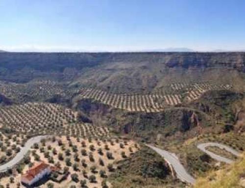 Rutas para recorrer Andalucía en Moto